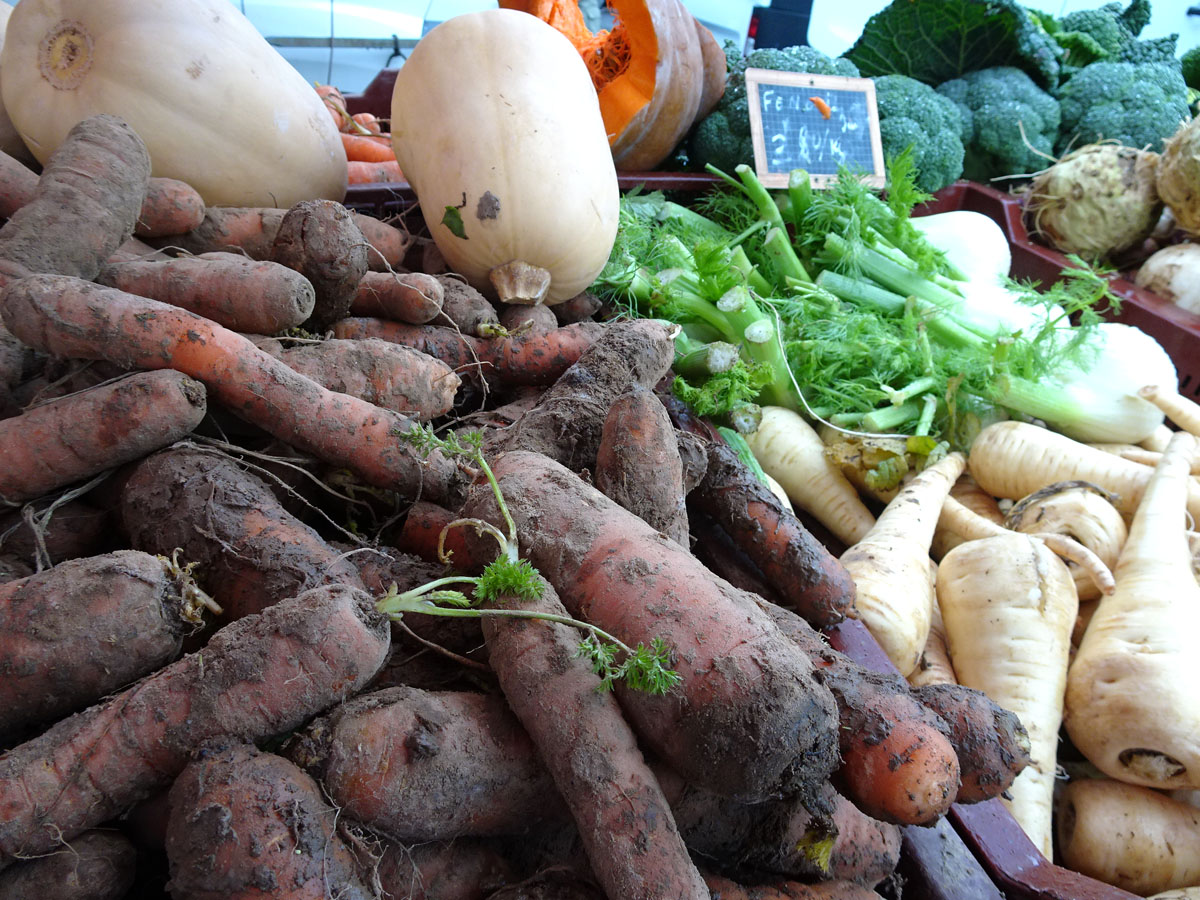 légumes vivants sortis de terre