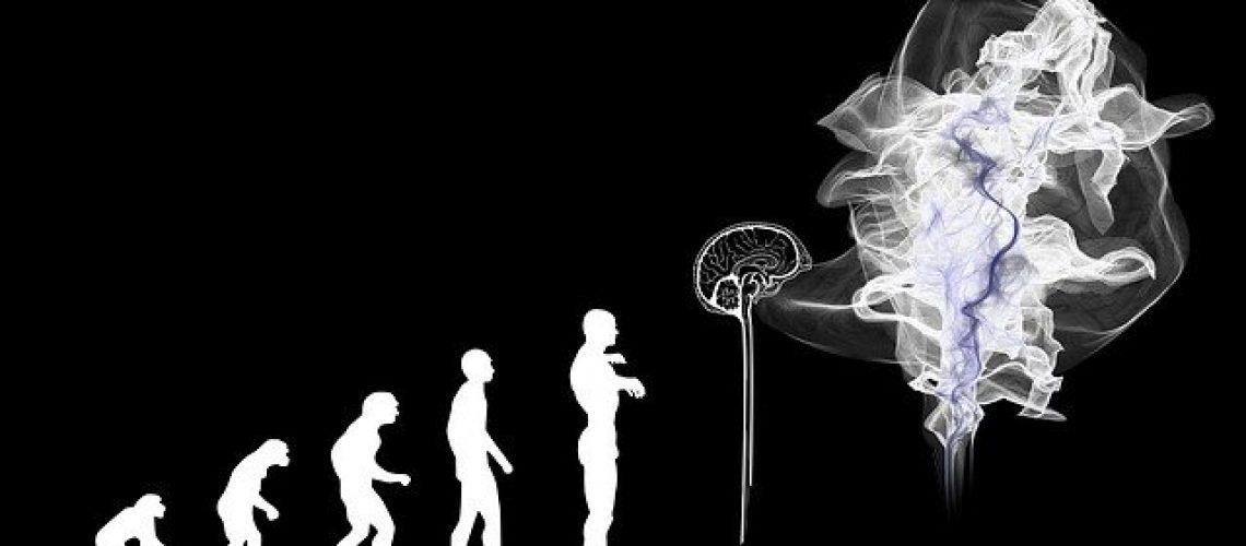 evolution-Gerd Altmann