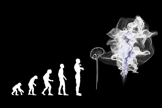 Le progrès ou la valeur de notre héritage génétique